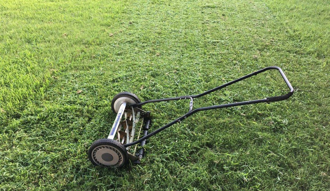 gras gazon onderhouden