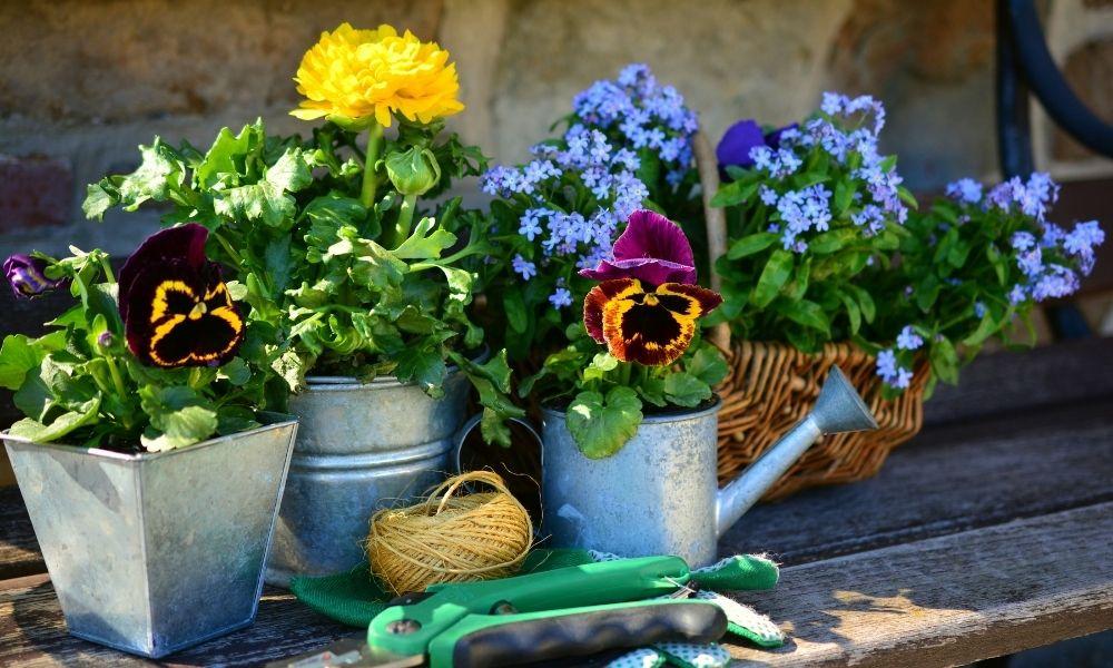 leuke bloempotten voor op je terras